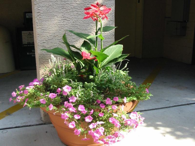 Flower Beds And Pots Summit Lawn Amp Landscape